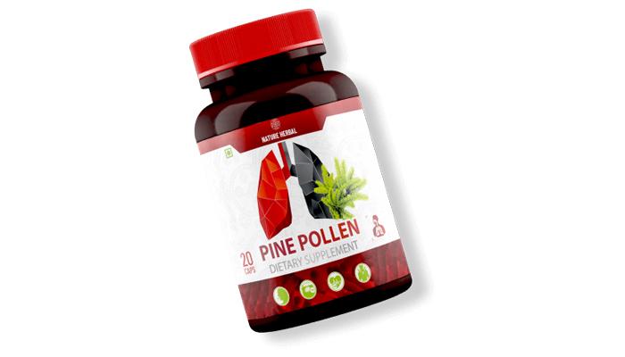 Pine Pollen: kapsul dengan ekstrak pain bagi kesihatan organ pernafasan